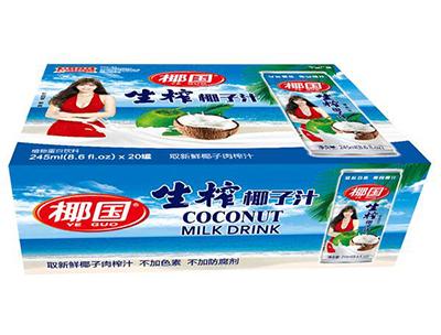 椰国生榨椰子汁245ml×20罐