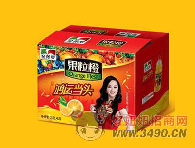 金保罗果粒橙2.5L(箱)