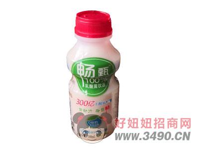 畅甄乳酸菌饮品340ml红盖