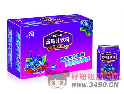 小百人蓝莓汁饮料248ML