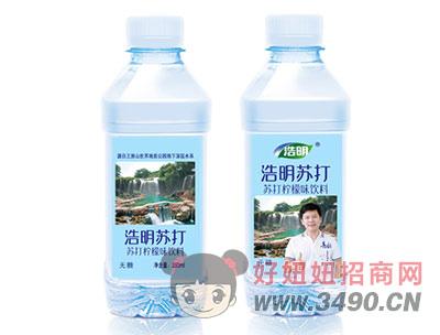 浩明苏打水350ml