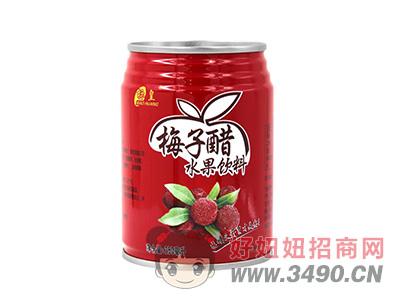 标皇梅子醋水果饮料250ml