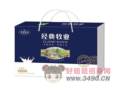 经典牧业无糖型乳味饮品250mlx12盒