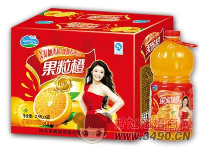 博晟果粒橙沉淀2.58LX6瓶