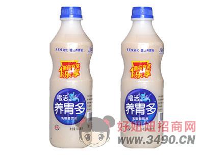 养胃多乳酸菌饮品1000ml