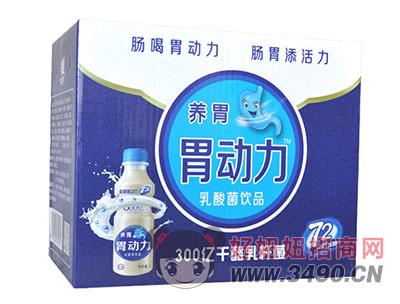 胃动力乳酸菌箱装