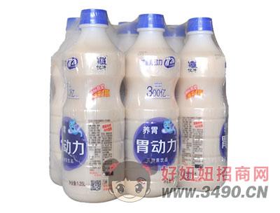 胃动力乳酸菌1.25L多瓶装