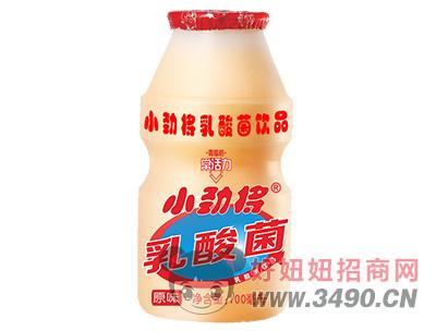 小劲将原味乳酸菌lehu国际app下载100ml