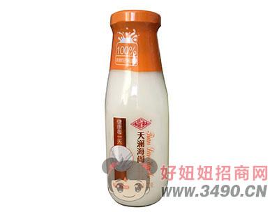 福淋天澜海阁原味发酵酸奶1l