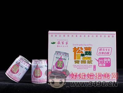 藏百草青稞浆儿童饮品礼盒