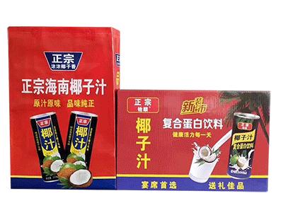 正宗海南椰子汁复合蛋白饮料