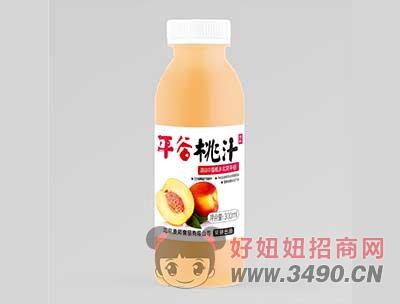 平谷桃汁饮料