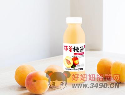 平谷桃汁饮料300ml瓶装