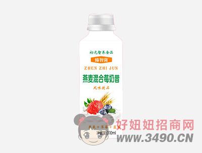 初元智养臻智菌燕麦混合莓奶昔风味饮品310ml