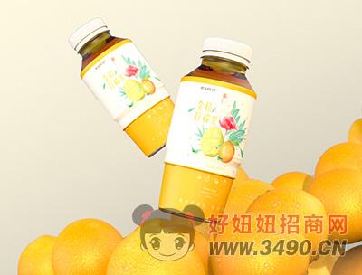 迈芙金桔柠檬茶饮料480ml