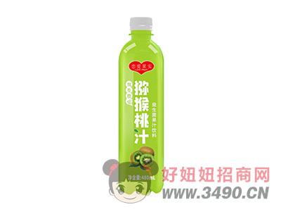 恋爱果实猕猴桃汁益生菌果汁饮料480ml