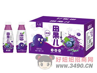 入巷田果儿蓝莓复合果汁450ml×15瓶