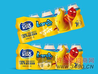 捷世冠益生菌发酵乳酸菌lehu国际app下载100ml×5瓶