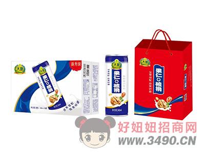 大地果仁+核桃植物蛋白饮料240ml×20罐