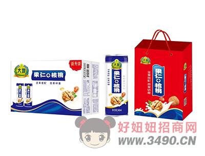 大地果仁+核桃植物蛋白饮料240ml×16罐