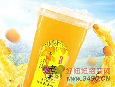 爱加壹冰芒果果汁饮料380ml