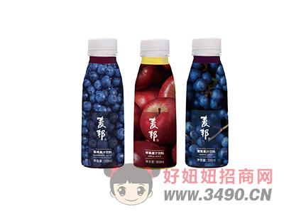 麦邦果汁饮料300ml类型二