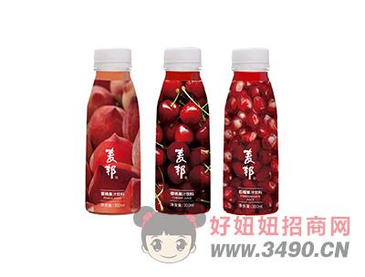 麦邦果汁饮料300ml类型一