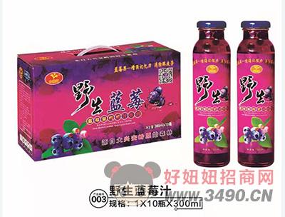 小白兰野生蓝莓汁红瓶