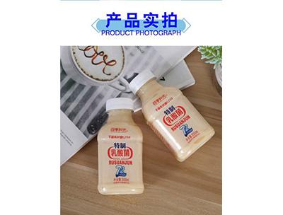 特质乳酸菌饮料