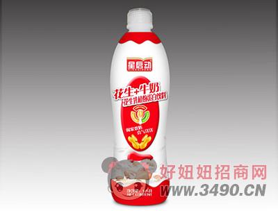 星启动花生牛奶植物蛋白饮料