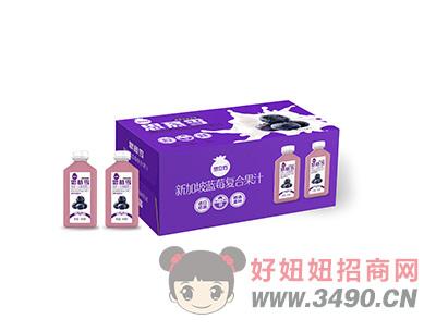 蓝莓复合果汁箱装