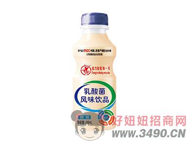 乳酸菌风味饮品330ml