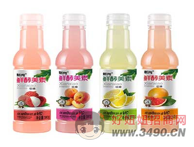 鲜酵美素低糖果汁380g