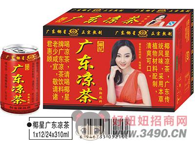 椰星广东凉茶箱装310ml