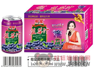 椰星蓝莓汁果汁lehu国际app下载310ml