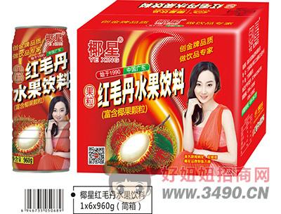 椰星红毛丹水果饮料简箱6x960g