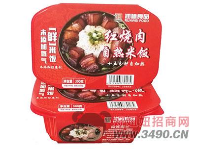 润味红烧肉自热米饭300g