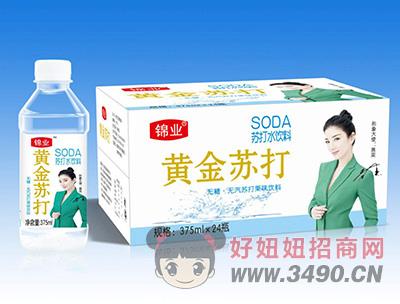 黄金苏打水饮料375mlX24瓶