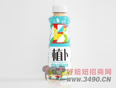 植卜乳酸菌lehu国际app下载
