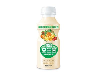 果蔬益生菌乳酸菌味饮品