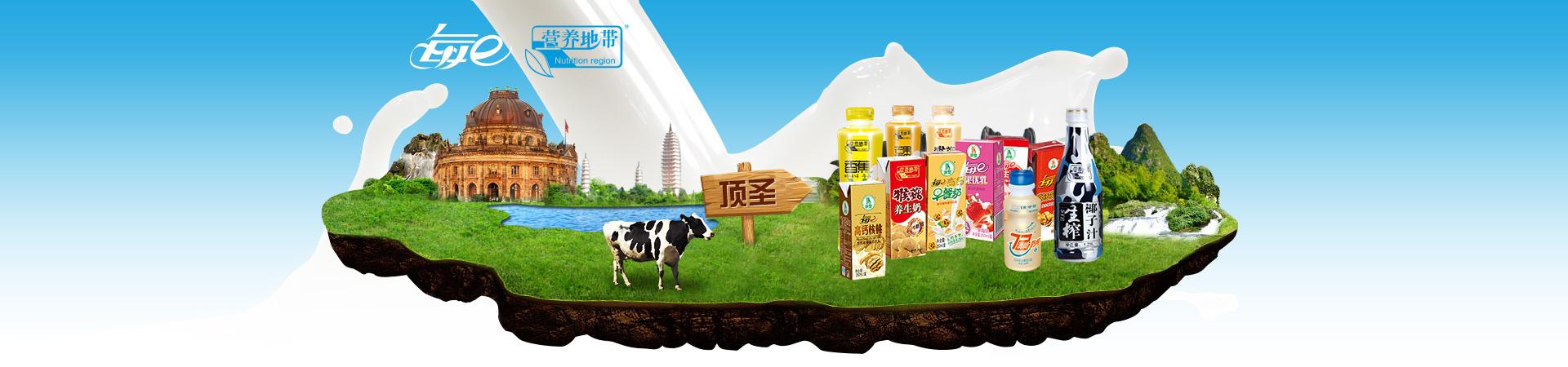 江苏顶圣食品科技有限公司荣誉资质