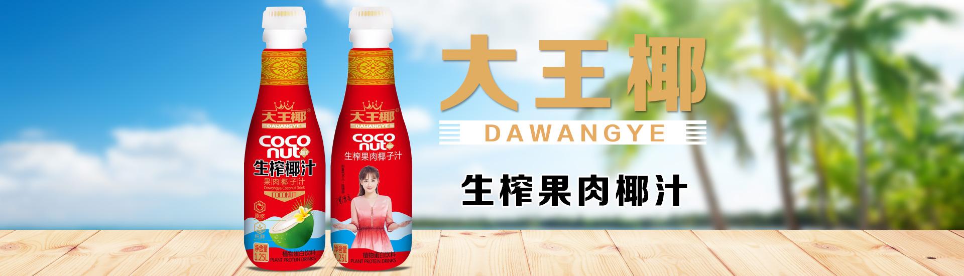 广东大王椰食品有限公司