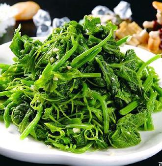 这几种山野菜你见过吗?不但好吃营养价值高,做法还简单哦