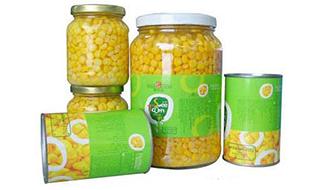 玉米罐头厂家