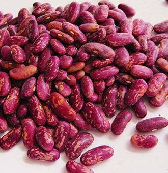 你知道孕产妇婴幼儿能吃芸豆吗?芸豆营养价值及功效与作用
