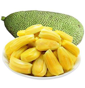 菠萝蜜的价值