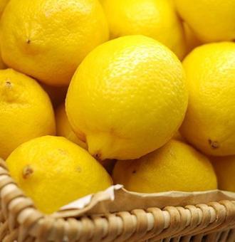 ��檬的�介