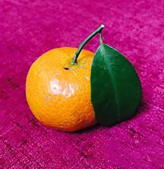 橘子汁怎么做?