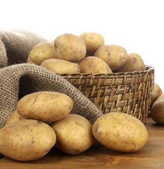 土豆淀粉的�介