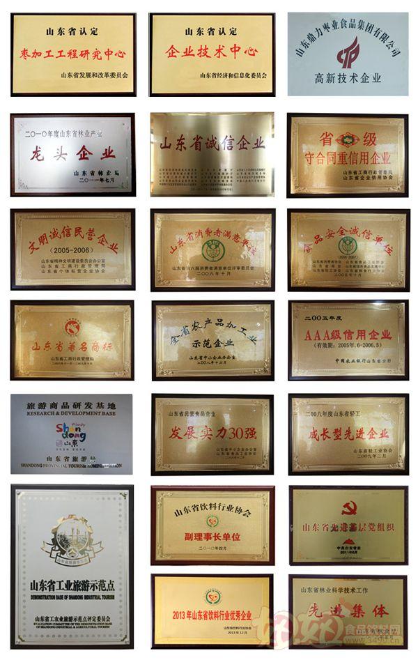 山东鼎力枣业食品集团有限公司荣誉证书